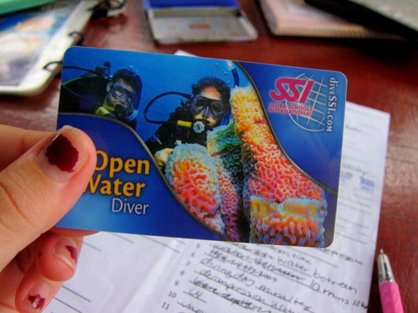 open water certification koh tao