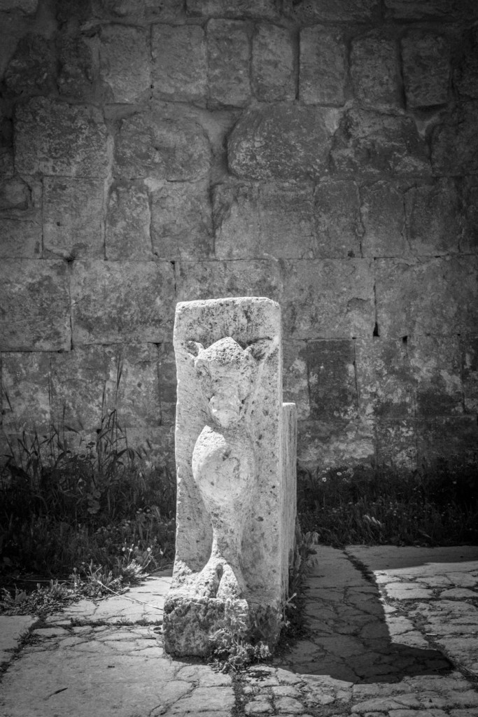 Jerash_Jordan_Roman_Ruins_5
