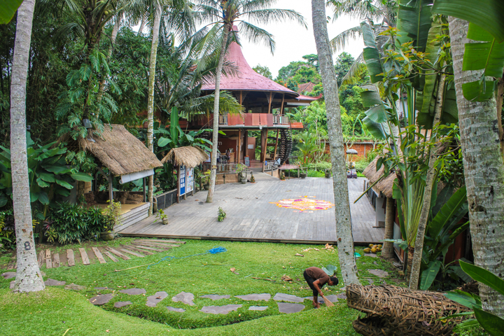 Should I Do a Yoga Retreat in Bali or India