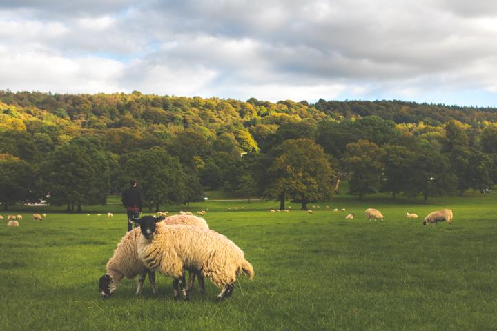 England's beautiful Peak District