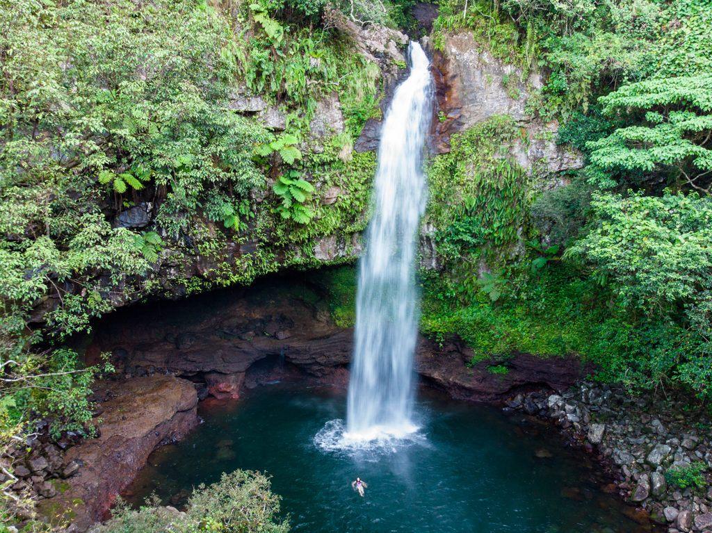 A gorgeous waterfall in Taveuni Island, Fiji